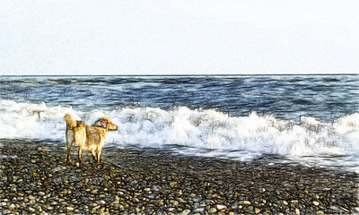 Dog near the sea and sea waves drawing