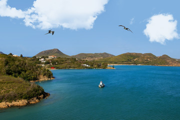 Coast Line and Entrance to Port of Antigua with Frigate Birds and a boat. View from a cruise ship.