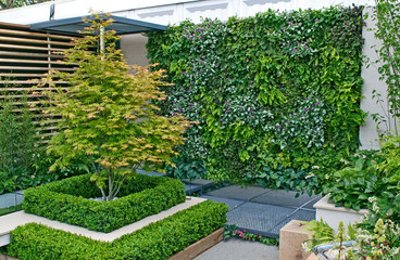 Printed roller blinds Garden A small urban environmental Eco garden with a vertical living plant wall