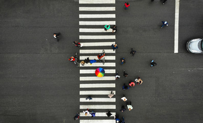 Aerial. People crowd on pedestrian crosswalk. Zebra crossing, top view. One person from crowd holds colorful umbrella. Wall mural