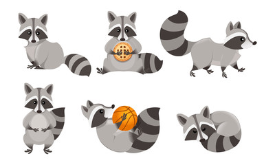 Cute cartoon raccoon set. Funny raccoons collection. Emotion little raccoon. Cartoon animal character design. Flat vector illustration isolated on white background