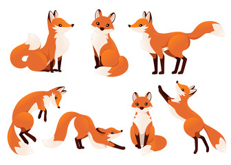 Obraz Cute cartoon fox set. Funny red fox collection. Emotion little animal. Cartoon animal character design. Flat vector illustration isolated on white background - fototapety do salonu