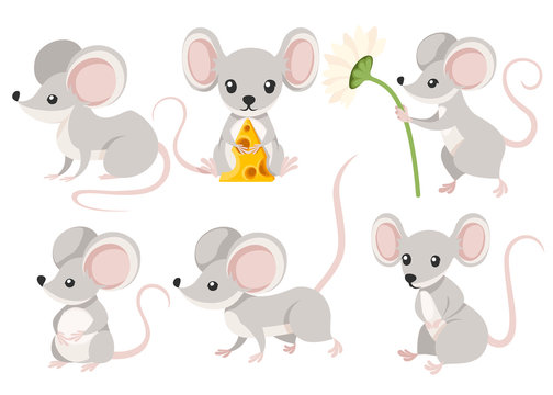 Cute cartoon mouse set. Funny little grey mouse collection. Emotion little animal. Cartoon animal character design. Flat vector illustration isolated on white background