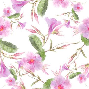Pink Dipladenia flowers on white background.Seamless pattern.