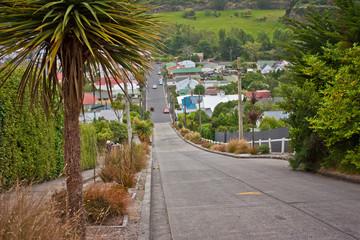 Baldwin street in Dunedin as the worlds steepest street, New Zealand