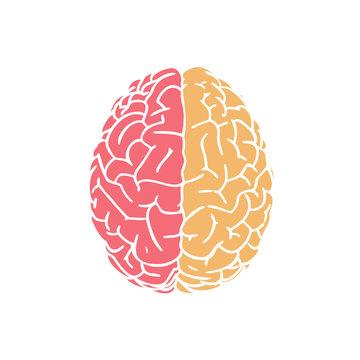 Red and yellow brain icon on white BG