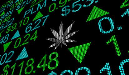Marijuana Pot Weed Cannabis Stock Company Business Market 3d Illustration