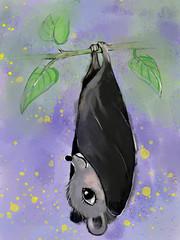 cute little bat is resting on a branch in night