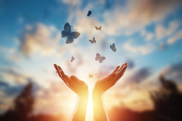 Hands close up on the background of a beautiful sunset, a flock of butterflies flies, enjoying nature. The concept of hope, faith, religion, a symbol of hope and freedom. Wall mural