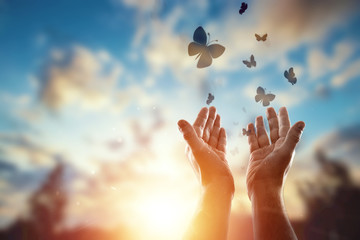 Hands close up on the background of a beautiful sunset, a flock of butterflies flies, enjoying nature. The concept of hope, faith, religion, a symbol of hope and freedom. Fotomurales