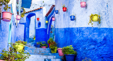 Beautiful blue walls with bright doors and colorful flower pots on the walls on a sunny day, Chefchaouen city medina in Morocco. Panorama