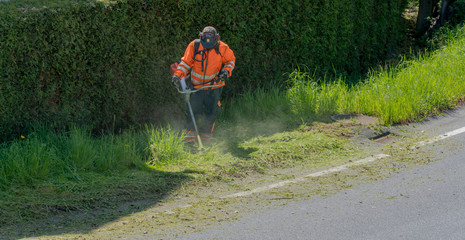 city maintenance worker cutting weed on the road shoulder with a strimmer