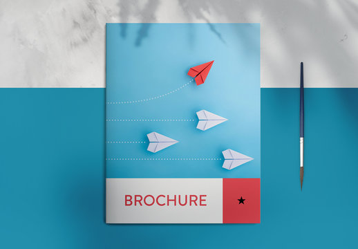 Blue and Red Brochure