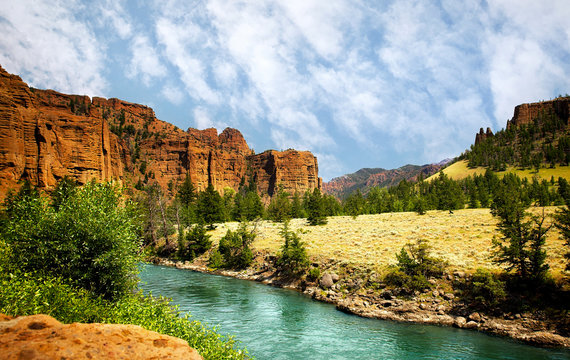 A stream running through a valley dotted with trees between mountain range in a Sunny summer Wyoming landscape
