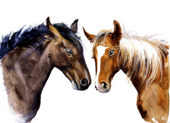 Watercolor sweet horses. Cute horses with love. Farm animals sketch