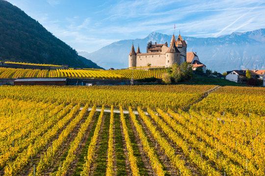 Aigle Castle, Aigle, Canton of Vaud, Switzerland, Europe