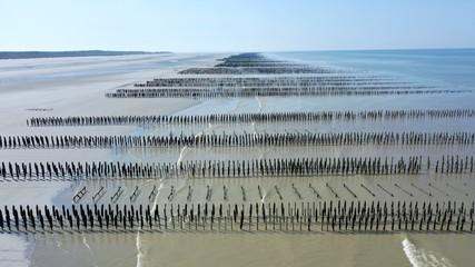 baie de Somme, d'Authie et parc du Marquenterre