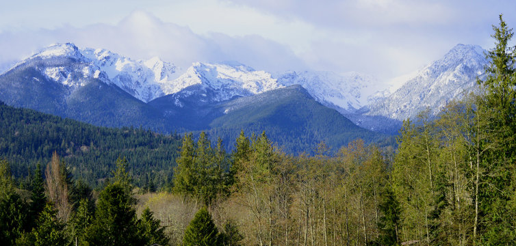 View of Snowy, Cloud strewn Olympic Mountains, Port Angeles, Washington