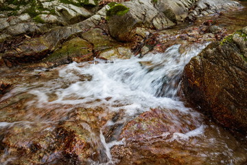Mountain stream in the forest at Shionoe town ,Shikoku,Japan