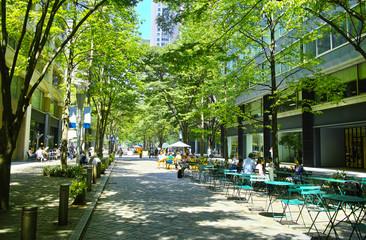 東京有楽町の新緑のビジネス街