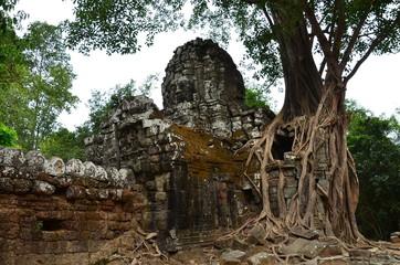 カンボジアのシェムリアップ 世界遺産のアンコールワット遺跡群 古くて美しい遺跡と遺跡に侵食して成長する大樹