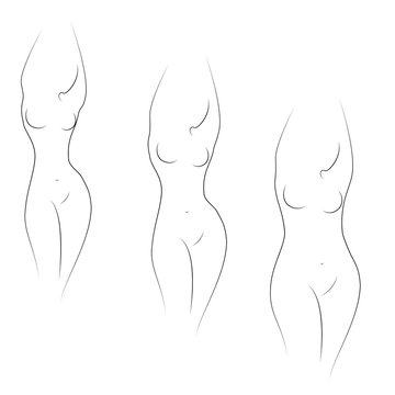 Collection. Silhouette of a beautiful woman figure. The girl is thin, slender and the woman is fat. The lady is standing. Set of vector illustrations