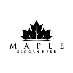 Fototapeta maple logo concept obraz