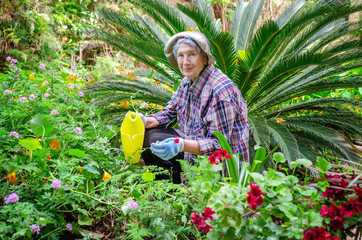 Elderly woman wearing in the male plaid shirt is sitting in the center of a flower garden.