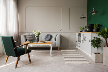 Open space kitchen and living room interior with comfortable couch and retro armchair