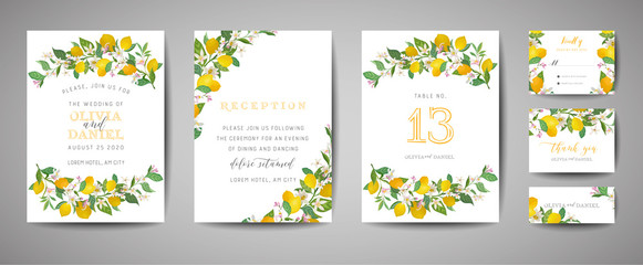 Set of Botanical wedding invitation card, vintage Save the Date, template design of lemons fruit flowers and leaves, blossom illustration. Vector trendy cover, graphic poster, brochure