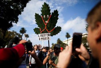 A man holds a banner depicting a cannabis leaf as people take pictures during a demonstration in support of the legalization of marijuana outside the Casa Rosada Presidential Palace in Buenos Aires