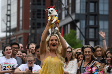 A woman holds up her chihuahua dog during a fancy dressed dog competition during the 'Running of the Chihuahuas' event as part of Cinco de Mayo celebrations in Washington