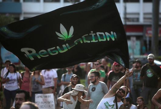 """A man waves a flag that says """"regulation"""" during a demonstration to demand the legalization of the use of marijuana in San Jose"""