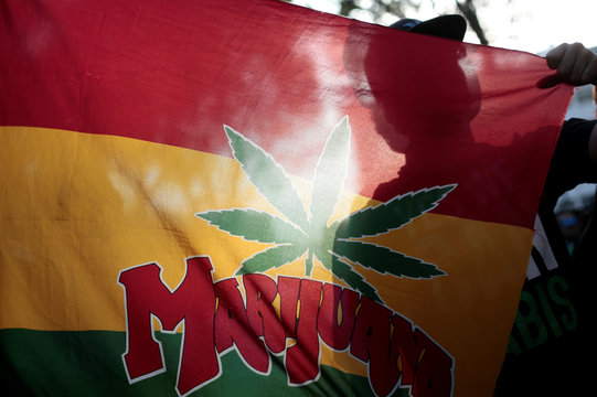 """A man holds a flag that says """"Marijuana"""" during a demonstration to demand the legalization of the use of marijuana in San Jose"""