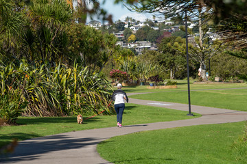 Taking the dog for a walk along a path