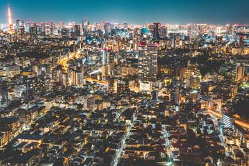 Beautiful night view of Tokyo