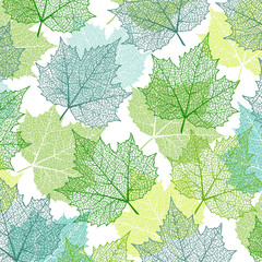 Background with blue and green maple leaves. Nature banner. Frame with plants. Template for invitation and greeting card