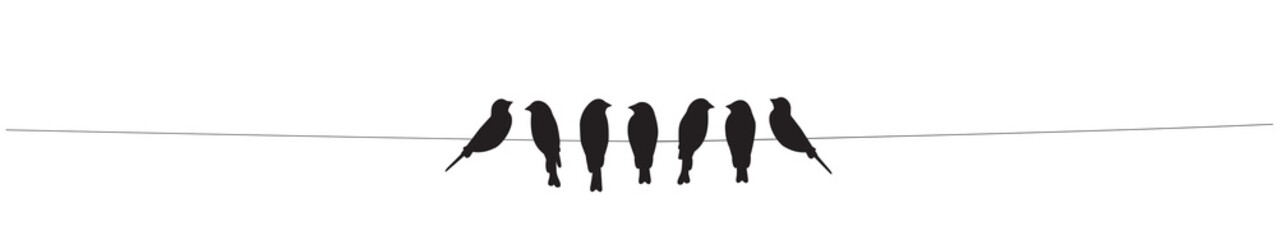 Birds on wire Vector, Birds silhouettes isolated on white background. Wall Decor, Wall Decals, Art Decor, Poster Design