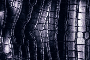 Wall Mural - Dark background - crocodile leather texture.