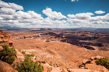 Wall Mural - Island in the Sky in Canyonlands National Park, Utah, USA