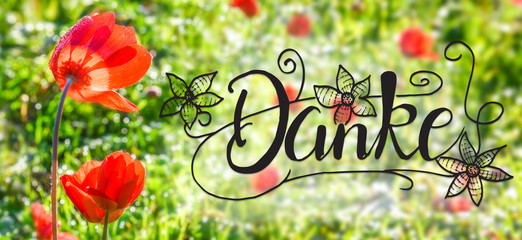 German Calligraphy Danke Means Thank You. Red Poppy Flower Meadow. Sunny Spring Season Greeting Card