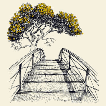 Wooden bridge arch, blooming tree in the background hand drawing vector