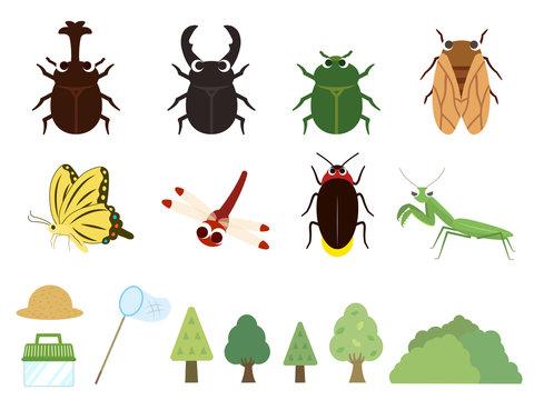 かわいい夏の昆虫イラスト素材
