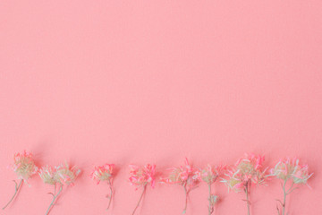 Abstract paper is colorful background, Creative design for pastel wallpaper. sweet dry flower...