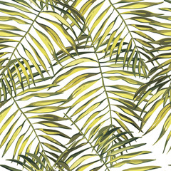 Tuinposter Tropische Bladeren Tropical palm leaves illustratiobs. Jungle leaves isolated on white background. Seamless patterns.