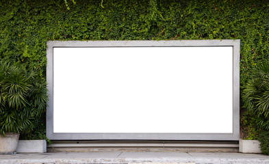 large white mock up board of shop window with green tropical wall on concrete footpath. advertise board.