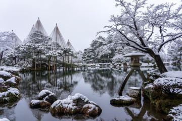 雪の兼六園 雪吊りされた唐崎松と徽軫灯籠