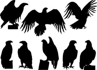Poster Uilen cartoon eight eagle silhouettes on white