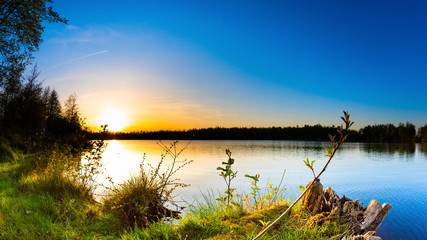 Fototapete - Lake with trees at sunset on a beautiful summer evening