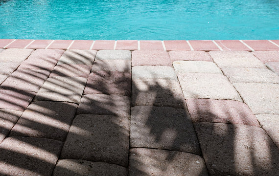 palm frond shadow on patio paver bricks by a swimming pool